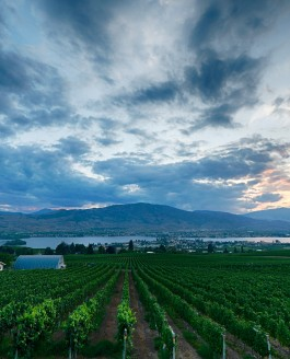 Osoyoos Winery